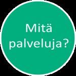 alvipallo_mitäpalveluja